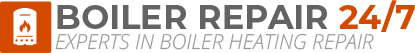 West Horsham Boiler Repair Logo